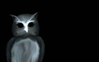 creepy dark scary owls 1280x800 wallpaper_www.wallpapername.com_9